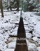 Andy Goldsworthy: Projects, Goldsworthy, Andy, Abrams, EAN/ISBN-13: 9781419722226