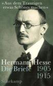 'Aus dem Traurigen etwas Schönes machen', Hesse, Hermann, Suhrkamp, EAN/ISBN-13: 9783518424087