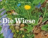 Die Wiese, Baltzer, Hans/Holtei, Christa, Beltz, Julius Verlag, EAN/ISBN-13: 9783407812230