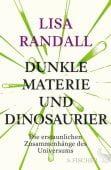 Dunkle Materie und Dinosaurier, Randall, Lisa, Fischer, S. Verlag GmbH, EAN/ISBN-13: 9783100021946
