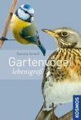 Gartenvögel lebensgroß, Strauß, Daniela, Franckh-Kosmos Verlags GmbH & Co. KG, EAN/ISBN-13: 9783440145357
