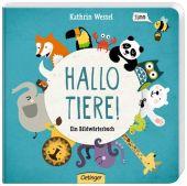 Hallo Tiere!, Wessel, Kathrin, Verlag Friedrich Oetinger GmbH, EAN/ISBN-13: 9783789178788