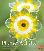 Pflanzen-Schätze, Syren, Stefanie/Borkowski, Elke, BLV Buchverlag GmbH & Co. KG, EAN/ISBN-13: 9783835413061