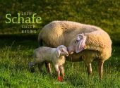 Schafe 2020, Ackermann Kunstverlag, EAN/ISBN-13: 9783838420882
