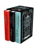 Silber - Die Trilogie der Träume, Gier, Kerstin, Fischer FJB Verlag, EAN/ISBN-13: 9783841440082