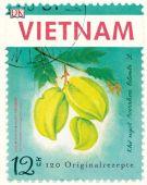 Vietnam, Mido, Jean-Philippe/Hando, Youssouf, Dorling Kindersley Verlag GmbH, EAN/ISBN-13: 9783831023325