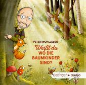 Weißt du, wo die Baumkinder sind?, Wohlleben, Peter, Oetinger Media GmbH, EAN/ISBN-13: 9783837310986
