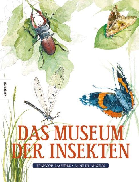 Lasserre, François: Das Museum der Insekten
