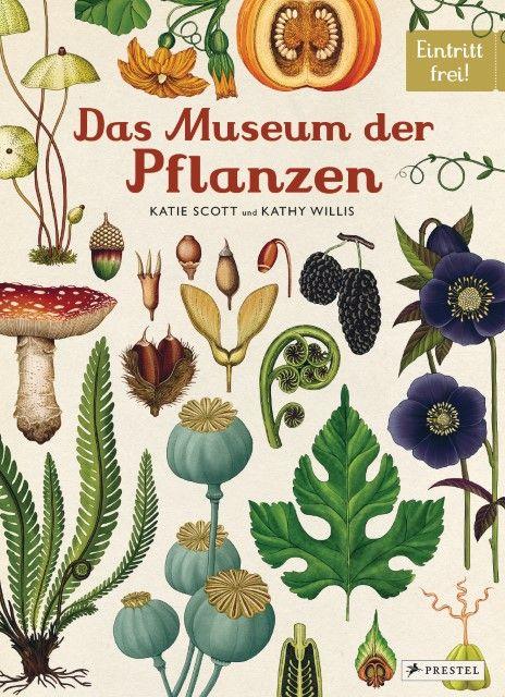 Scott, Katie/Willis, Kathy: Das Museum der Pflanzen
