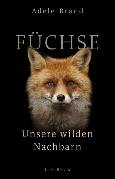 Brand, Adele: Füchse