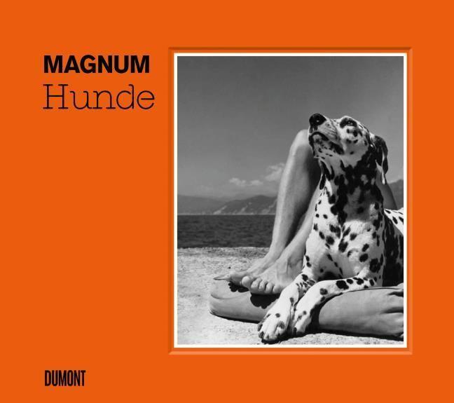 Magnum Photos: HUNDE
