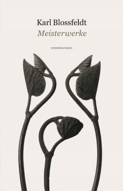 Küster, Hansjörg/Blossfeldt, Karl: Karl Blossfeldt - Meisterwerke