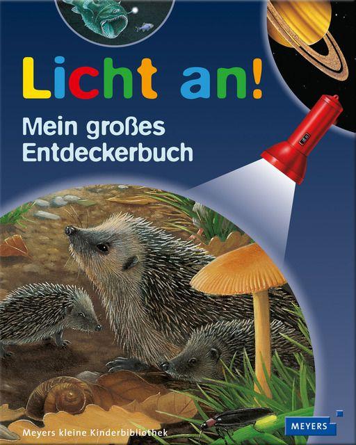 : Licht an - Mein großes Entdeckerbuch