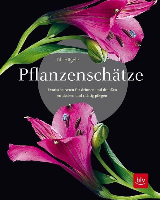 Hägele, Till: Pflanzenschätze