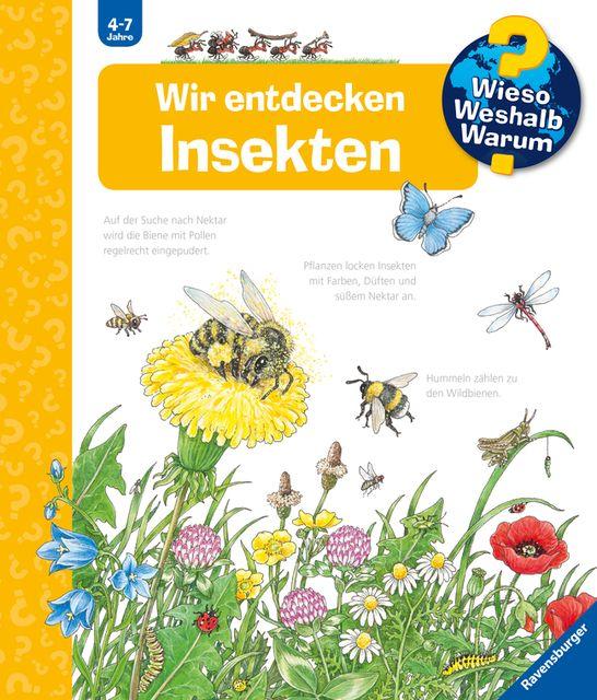 Weinhold, Angela: Wir entdecken Insekten