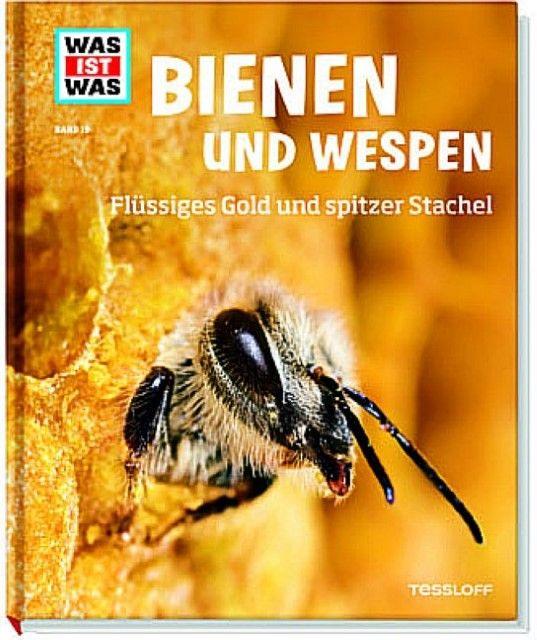 Rigos, Alexandra: Bienen und Wespen