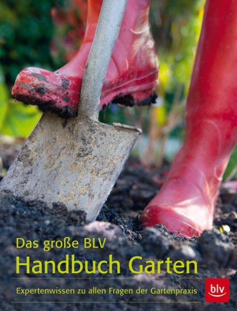 : Das große BLV Handbuch Garten