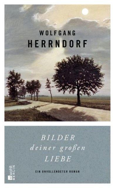 Herrndorf, Wolfgang: Bilder deiner großen Liebe