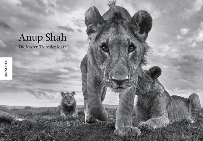 Shah, Anup: Anup Shah - Die letzten Tiere der Mara
