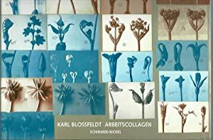 Karl Blossfeldt: Arbeitscollagen, Karl Blossfeldt