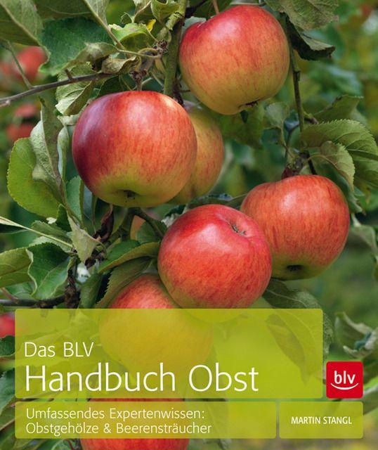 Stangl, Martin: Das BLV Handbuch Obst