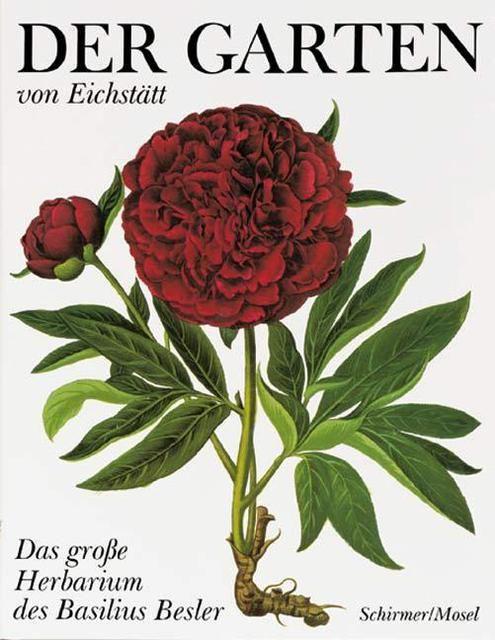 Besler, Basilius: Der Garten von Eichstätt