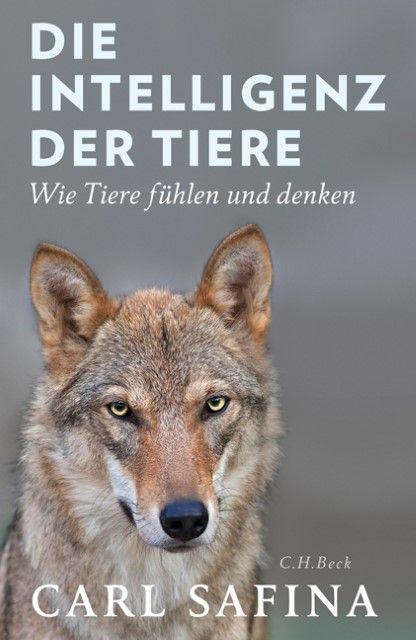 Safina, Carl: Die Intelligenz der Tiere