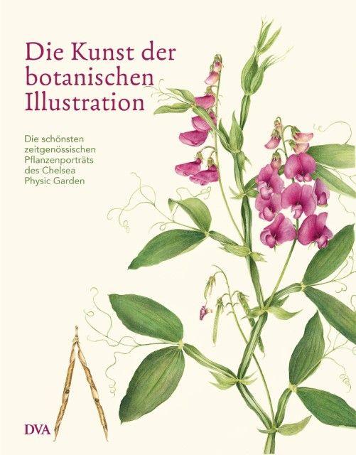 Brown, Andrew: Die Kunst der botanischen Illustration