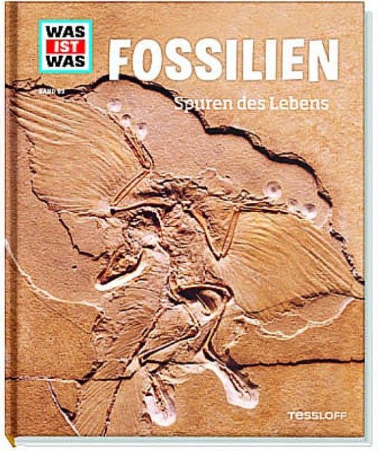 Baur, Manfred: Fossilien - Spuren des Lebens