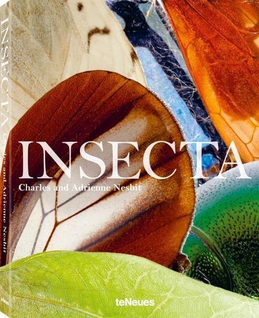 Nesbit, Charles/Nesbit, Adrienne: Insecta