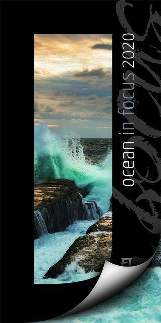 : Ocean in Focus 2020