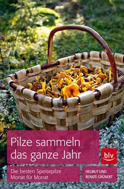 Grünert, Helmut/Grünert, Renate: Pilze sammeln das ganze Jahr