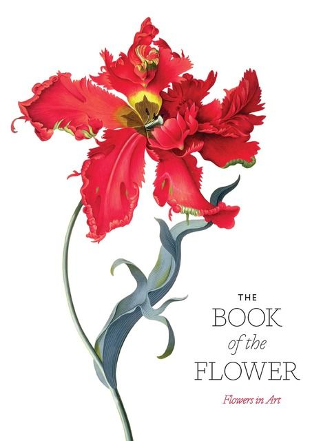 Hyland, Angus/Wilson, Kendra: The Book of the Flower