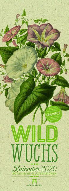 Pratt, Anne: Wildwuchs - Botanische Illustrationen - Graspapier-Kalender 2020