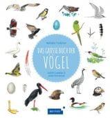 Das große Buch der Vögel, Tjordman, Nathalie, Fischer Meyers, EAN/ISBN-13: 9783737372060