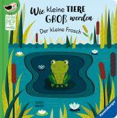 Wie kleine Tiere groß werden: Der kleine Frosch, Clima, Gabriele, Ravensburger Verlag GmbH, EAN/ISBN-13: 9783473438600