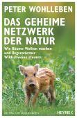 Das geheime Netzwerk der Natur, Wohlleben, Peter, Heyne, Wilhelm Verlag, EAN/ISBN-13: 9783453605619