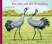 Ein Jahr mit den Kranichen, Müller, Thomas, Gerstenberg Verlag GmbH & Co.KG, EAN/ISBN-13: 9783836960465