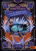 Herr Schnettelbeck und das Geheimnis der verschwundenen Sterne, Reinhardt, Verena, EAN/ISBN-13: 9783407754585