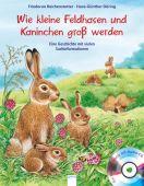 Kleine Feldhasen und Kaninchen werden groß, Reichenstetter, Friederun, Arena Verlag, EAN/ISBN-13: 9783401710891