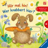 Hör mal hin! Wer knabbert hier?, Grimm, Sandra, Ravensburger Verlag GmbH, EAN/ISBN-13: 9783473438358