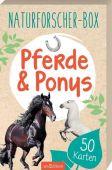 Naturforscher-Box - Pferde & Ponys, Scholz, Miriam, Ars Edition, EAN/ISBN-13: 9783845829012
