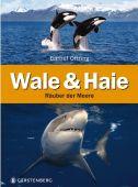 Wale & Haie, Oftring, Bärbel, Gerstenberg Verlag GmbH & Co.KG, EAN/ISBN-13: 9783836955881