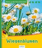 Wiesenblumen, Ernsten, Svenja, Esslinger Verlag J. F. Schreiber, EAN/ISBN-13: 9783480230341